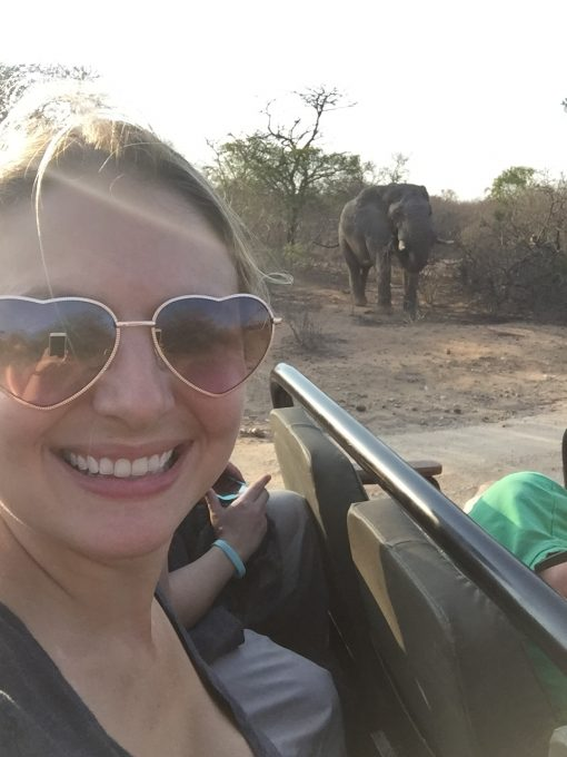 Up close and personal with a wild Afrian Elephant in Hoedspruit, South Africa