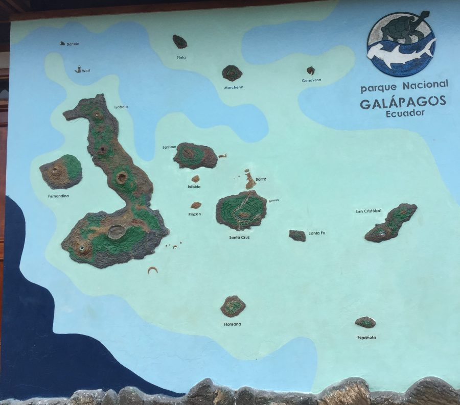 Explore the Galapagos by Land with Nature Galapagos Tours- Mags On The Move