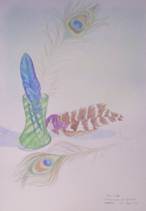 composition with natural objects: feathers