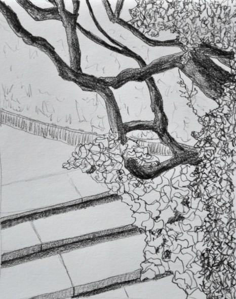 Dartington steps, graphite