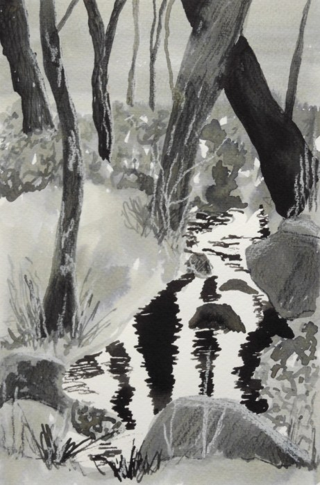 stream and trees in ink