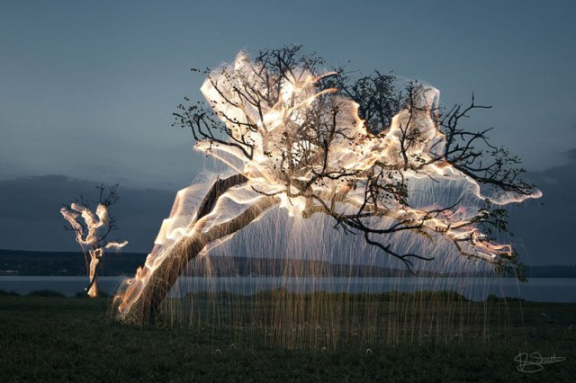 1-impermanent-sculptures-firework-tree-photography-vitor-schietti-12