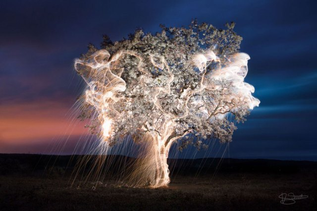 3-impermanent-sculptures-firework-tree-photography-vitor-schietti-11