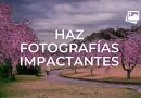 Qué debes tener en cuenta para hacer fotografías impactantes