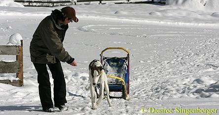 avalon-schlitten-20090122-2
