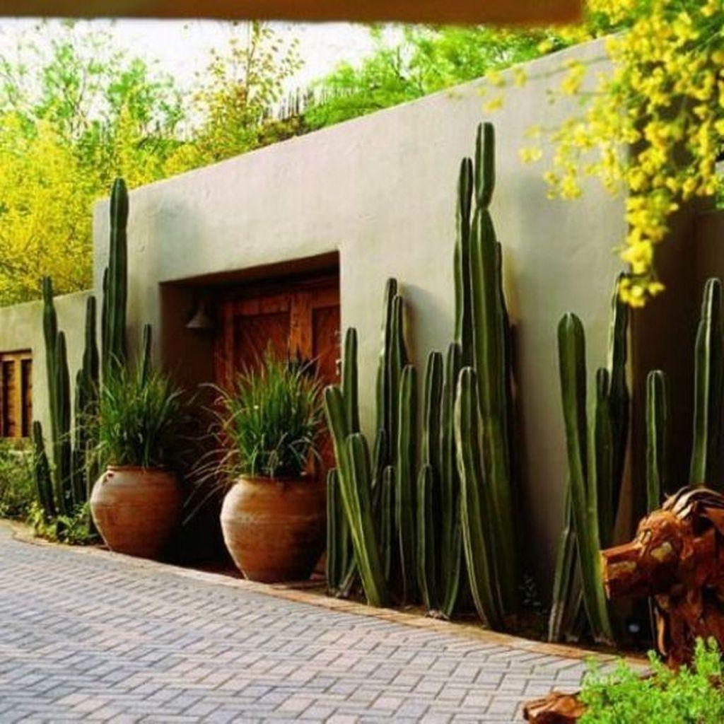 Incredible Cactus Garden Landscaping Ideas Best For Summer 01