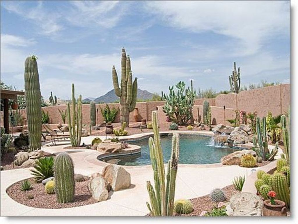 Incredible Cactus Garden Landscaping Ideas Best For Summer 10