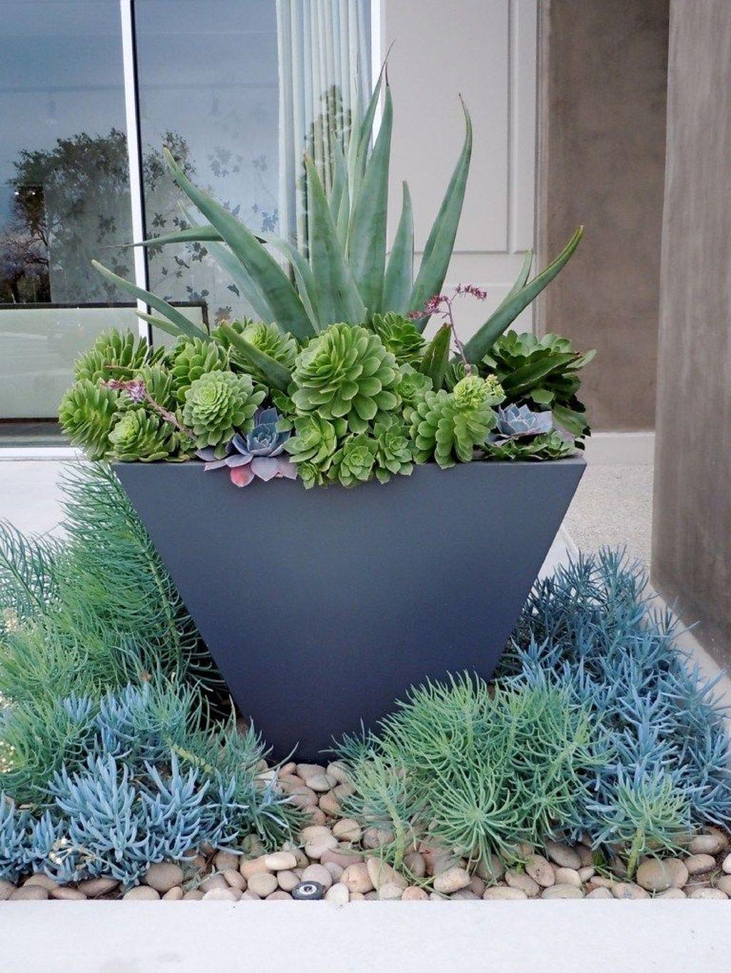Incredible Cactus Garden Landscaping Ideas Best For Summer 25