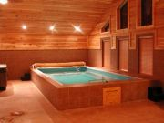 Lovely Small Indoor Pool Design Ideas 17