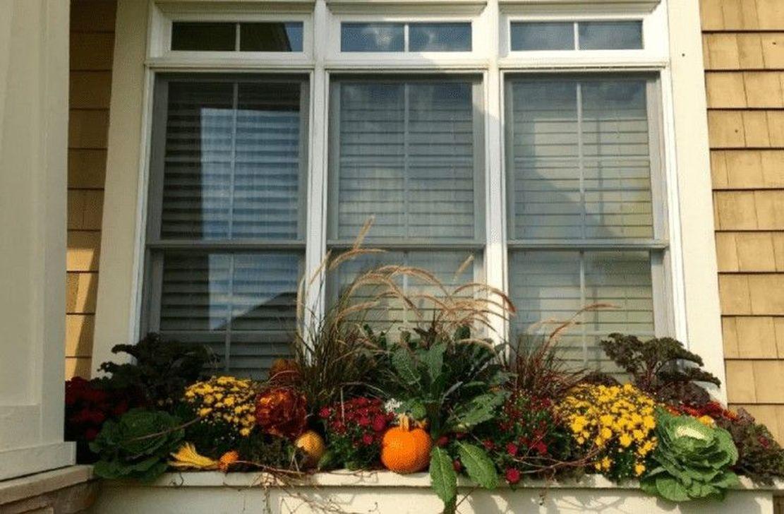 Beautiful Fall Window Boxes Design Ideas 03