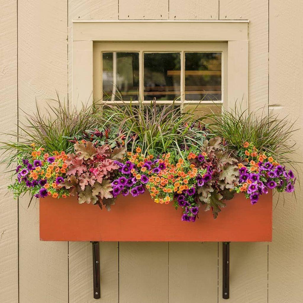 Beautiful Fall Window Boxes Design Ideas 23