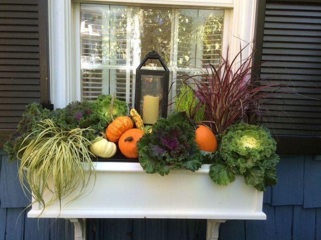 Beautiful Fall Window Boxes Design Ideas 25