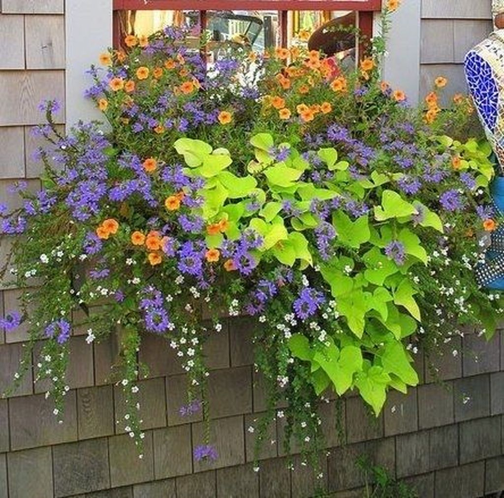 Beautiful Fall Window Boxes Design Ideas 30