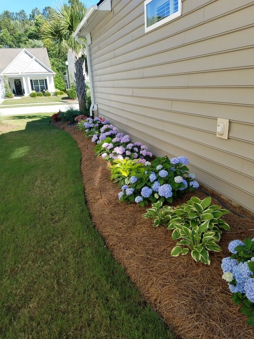 Beautiful Hydrangea Design Ideas Landscaping Your Front Yard 11