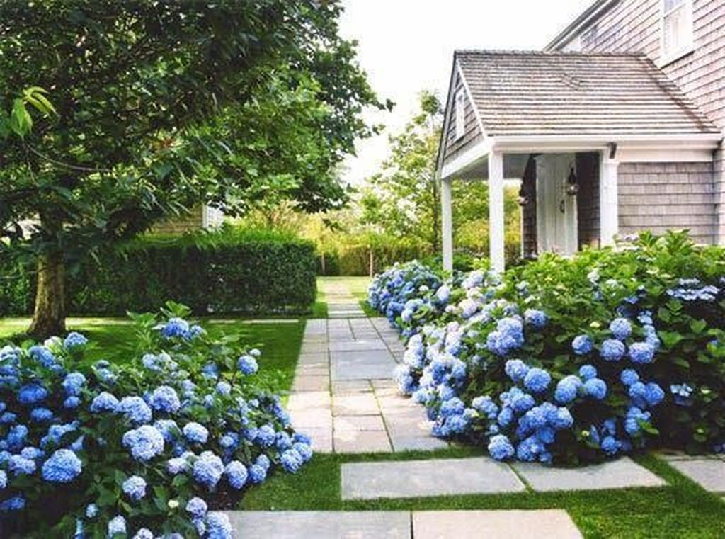 Beautiful Hydrangea Design Ideas Landscaping Your Front Yard 20