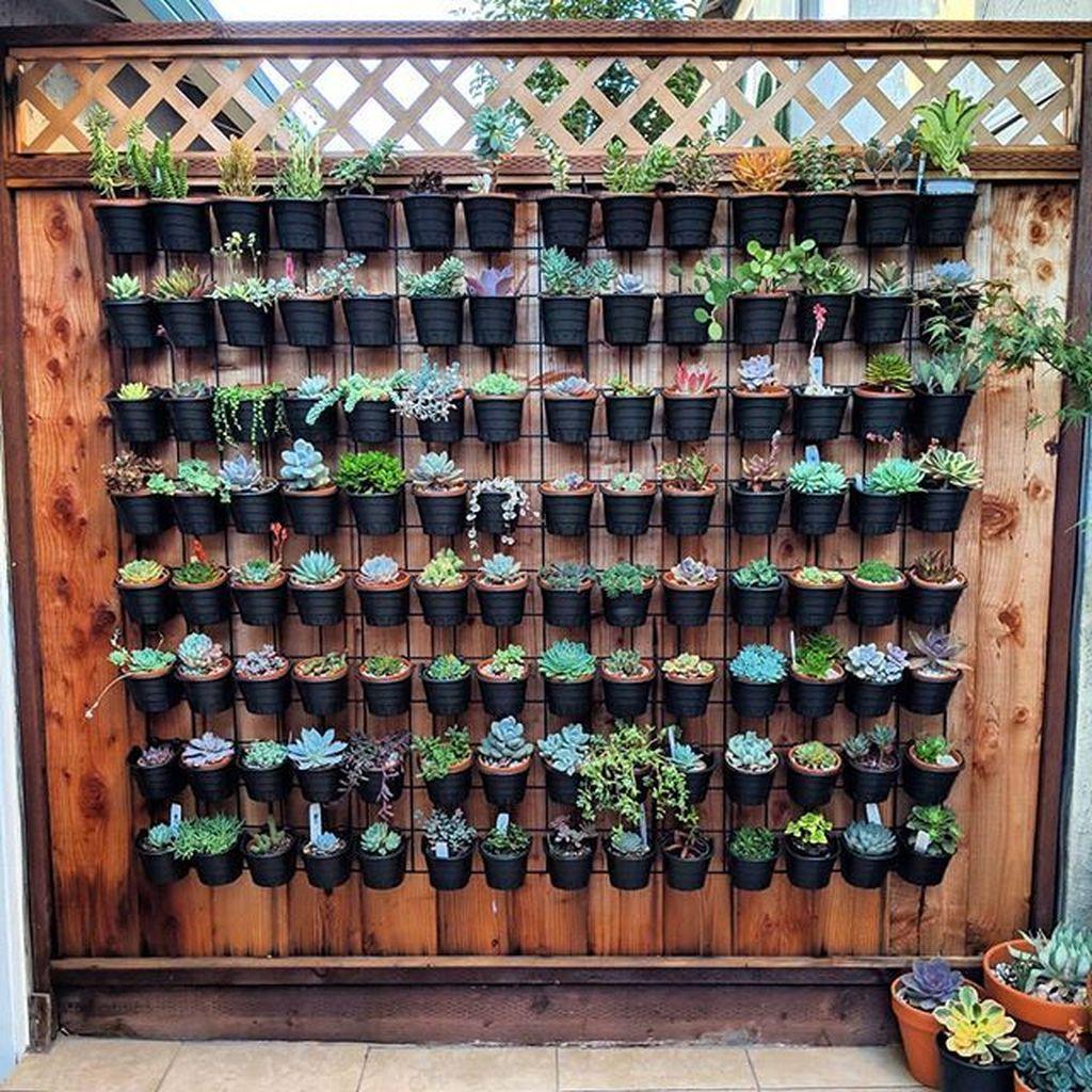 Gorgeous Vertical Garden Ideas Wall Decor 05