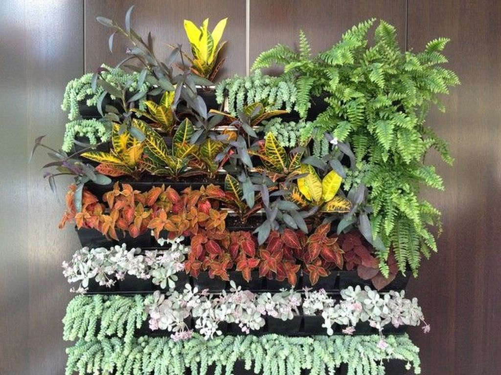 Gorgeous Vertical Garden Ideas Wall Decor 10