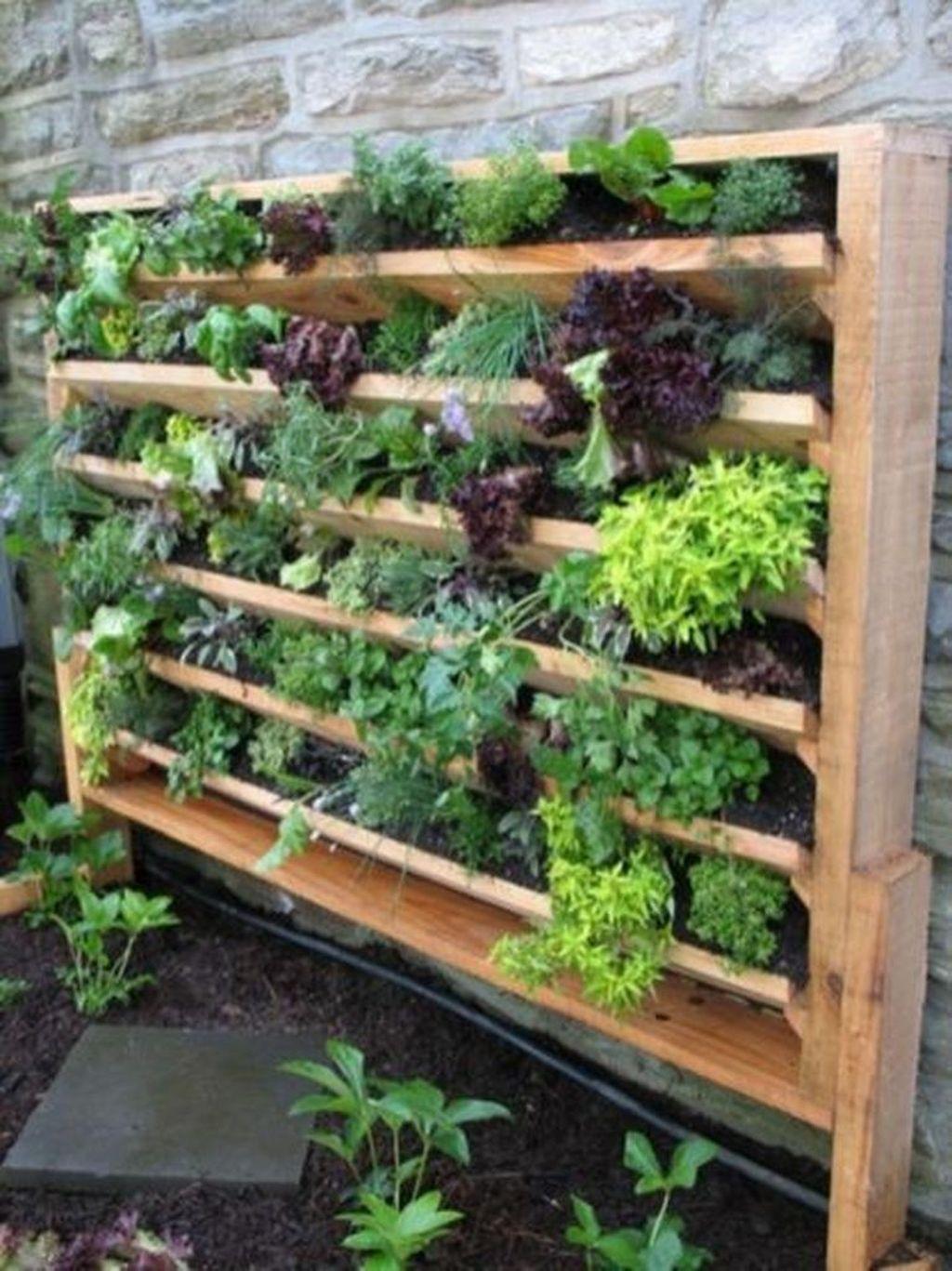 Gorgeous Vertical Garden Ideas Wall Decor 20
