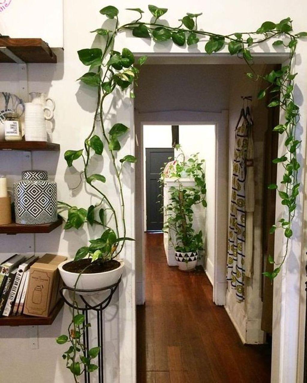 Gorgeous Vertical Garden Ideas Wall Decor 21
