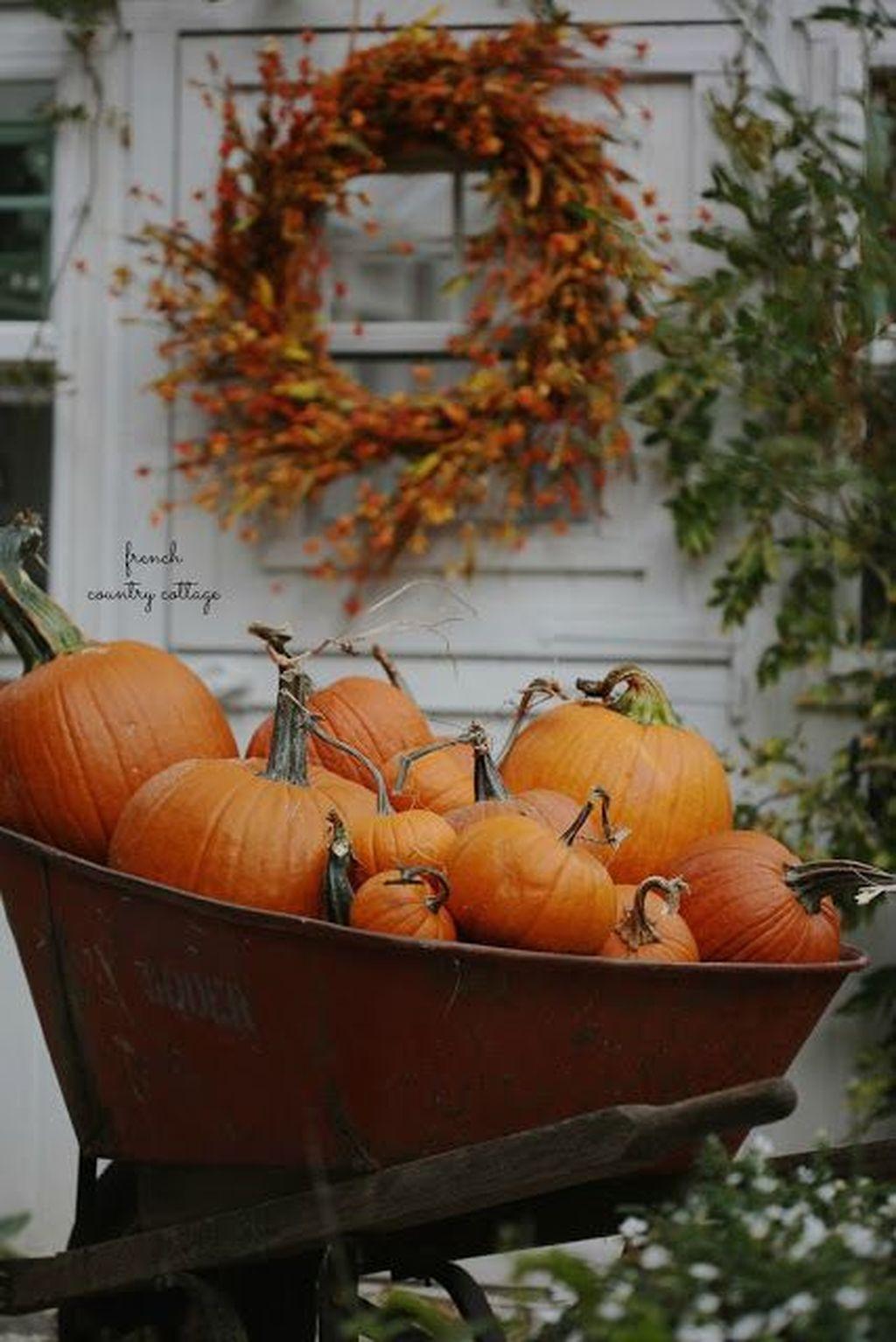 Lovely Fall Pumpkin Decor Ideas 13