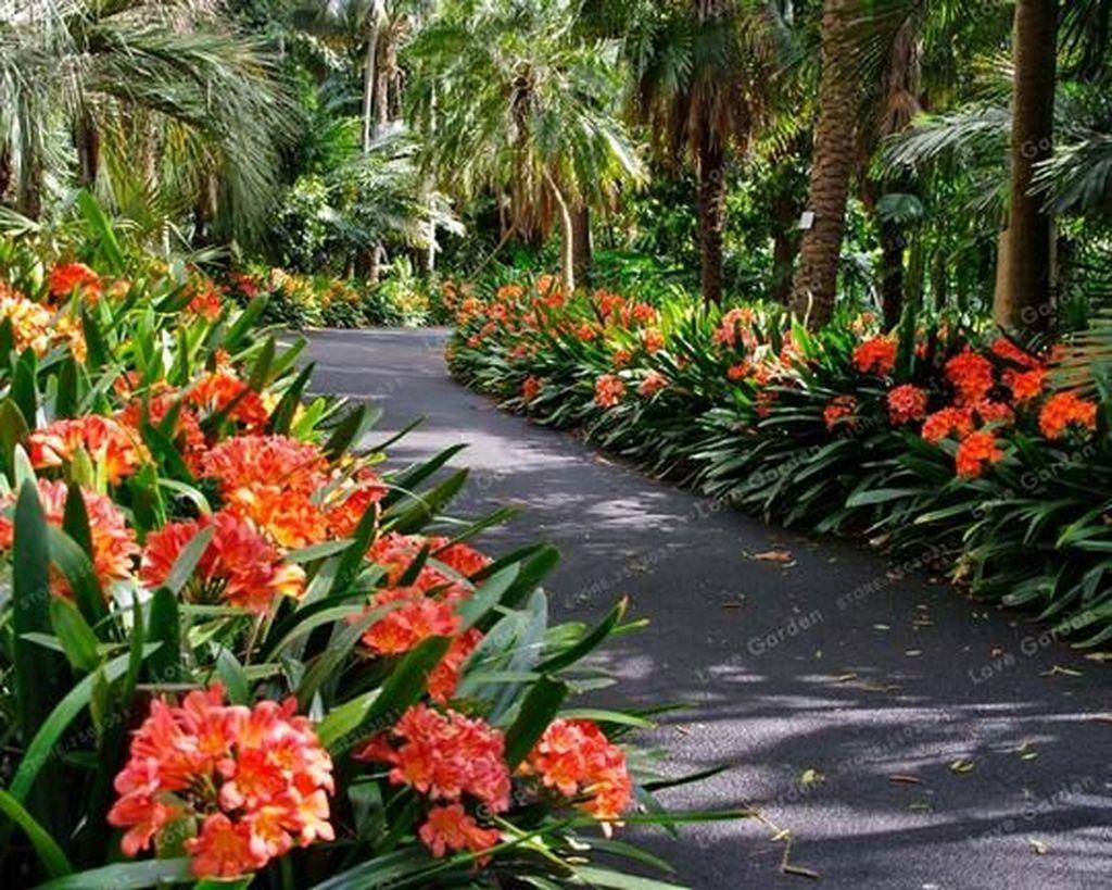 Lovely Tropical Garden Design Ideas 02