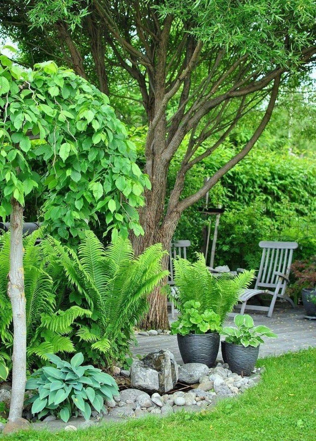 Lovely Tropical Garden Design Ideas 12