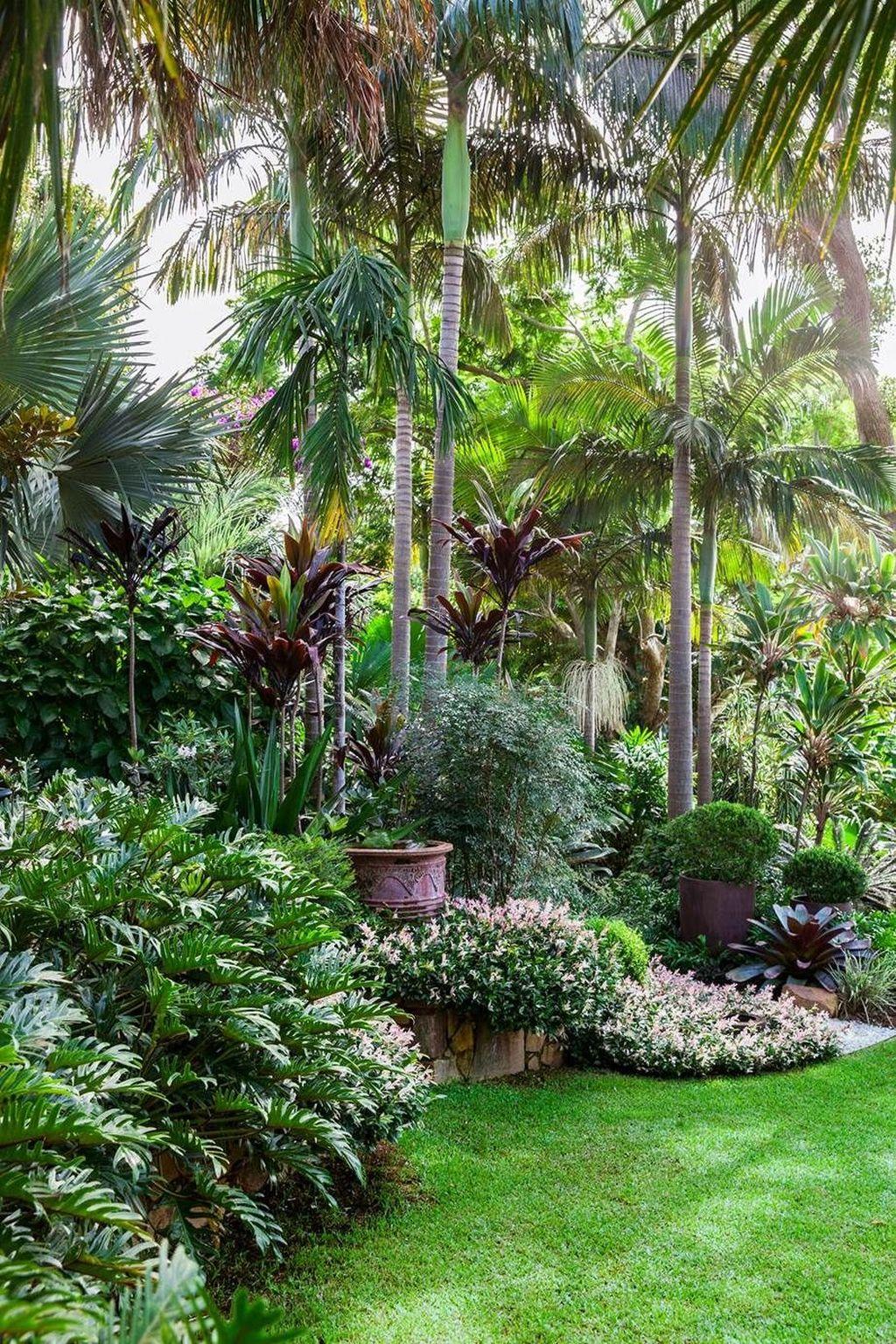 Lovely Tropical Garden Design Ideas 14