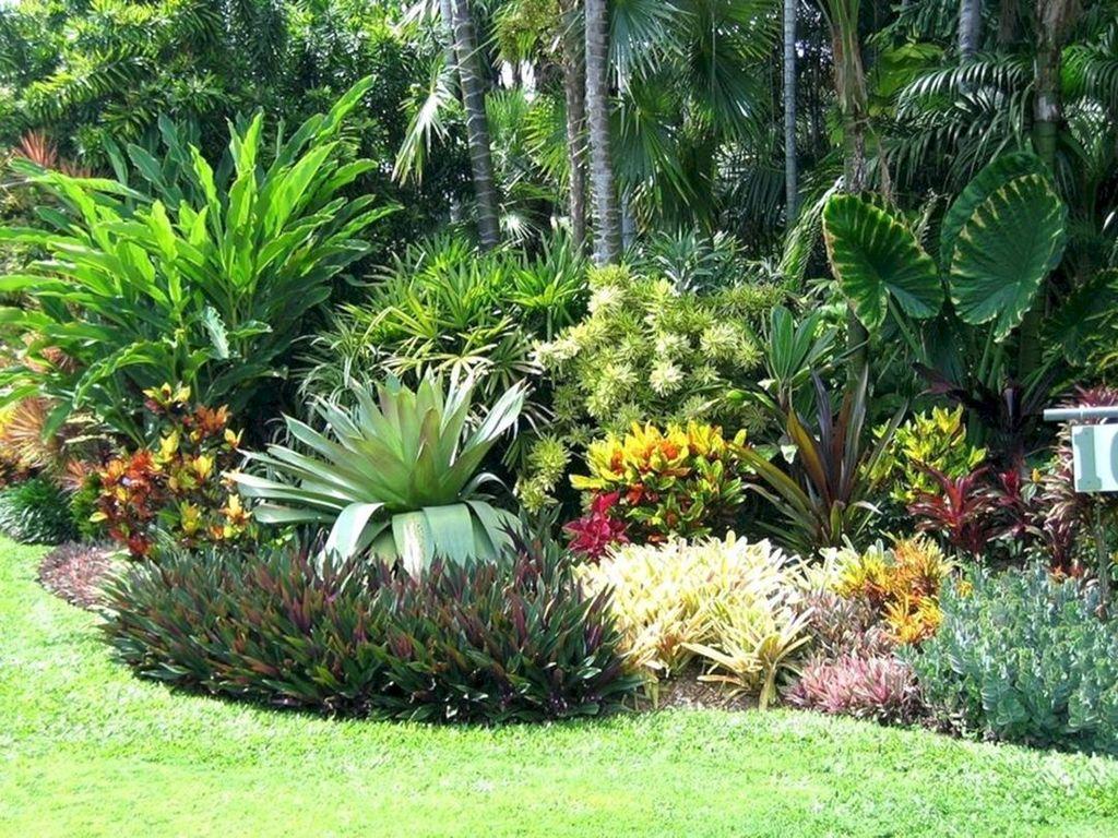 Lovely Tropical Garden Design Ideas 15