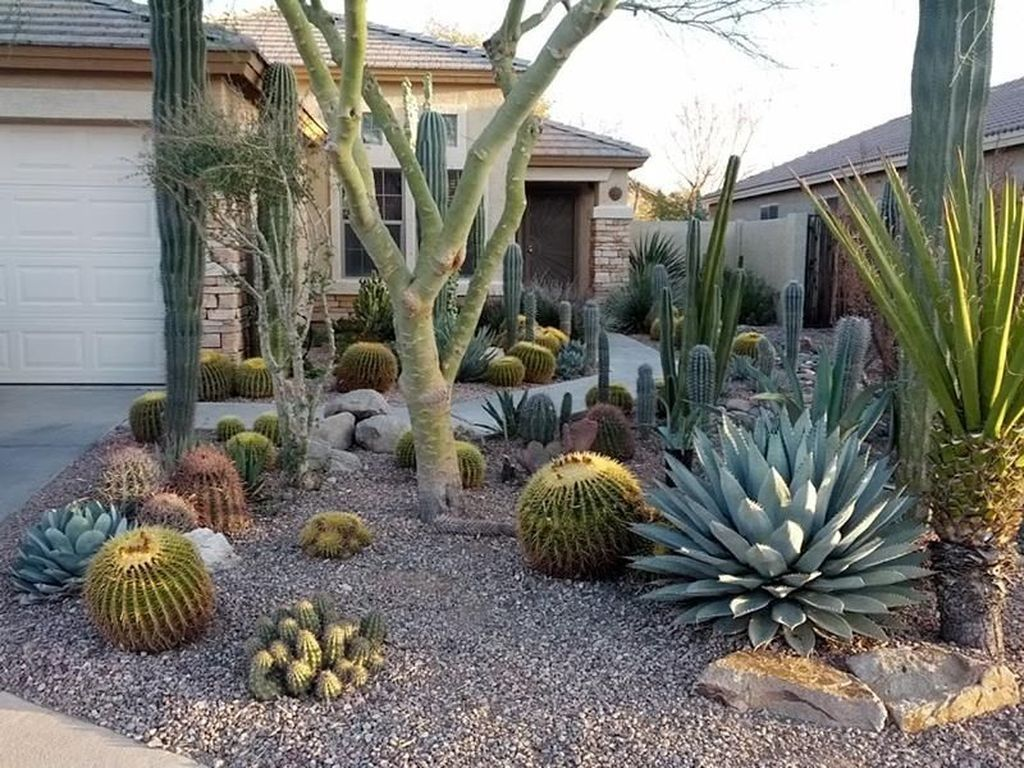 Popular Xeriscape Landscape Ideas For Your Front Yard 05