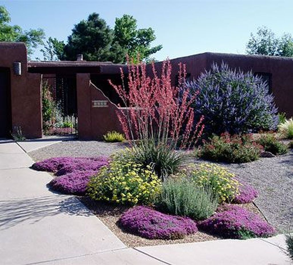 Popular Xeriscape Landscape Ideas For Your Front Yard 07