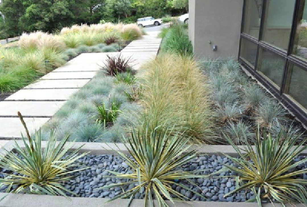 Popular Xeriscape Landscape Ideas For Your Front Yard 30