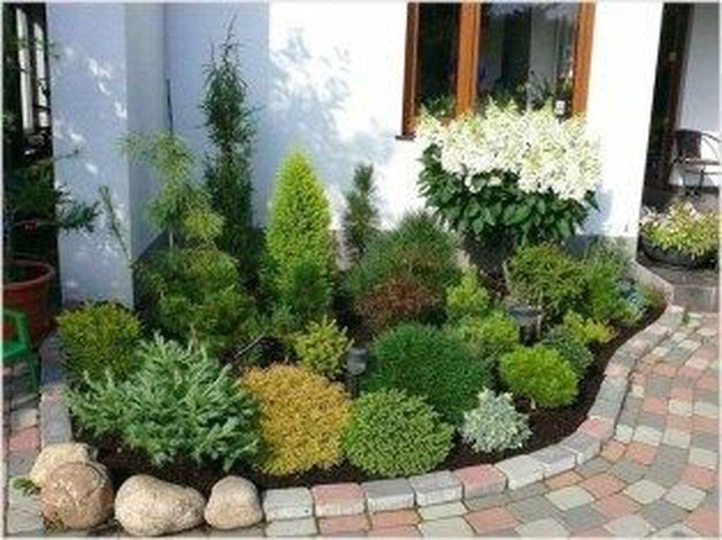 Wonderful Evergreen Landscape Ideas For Front Yard 12
