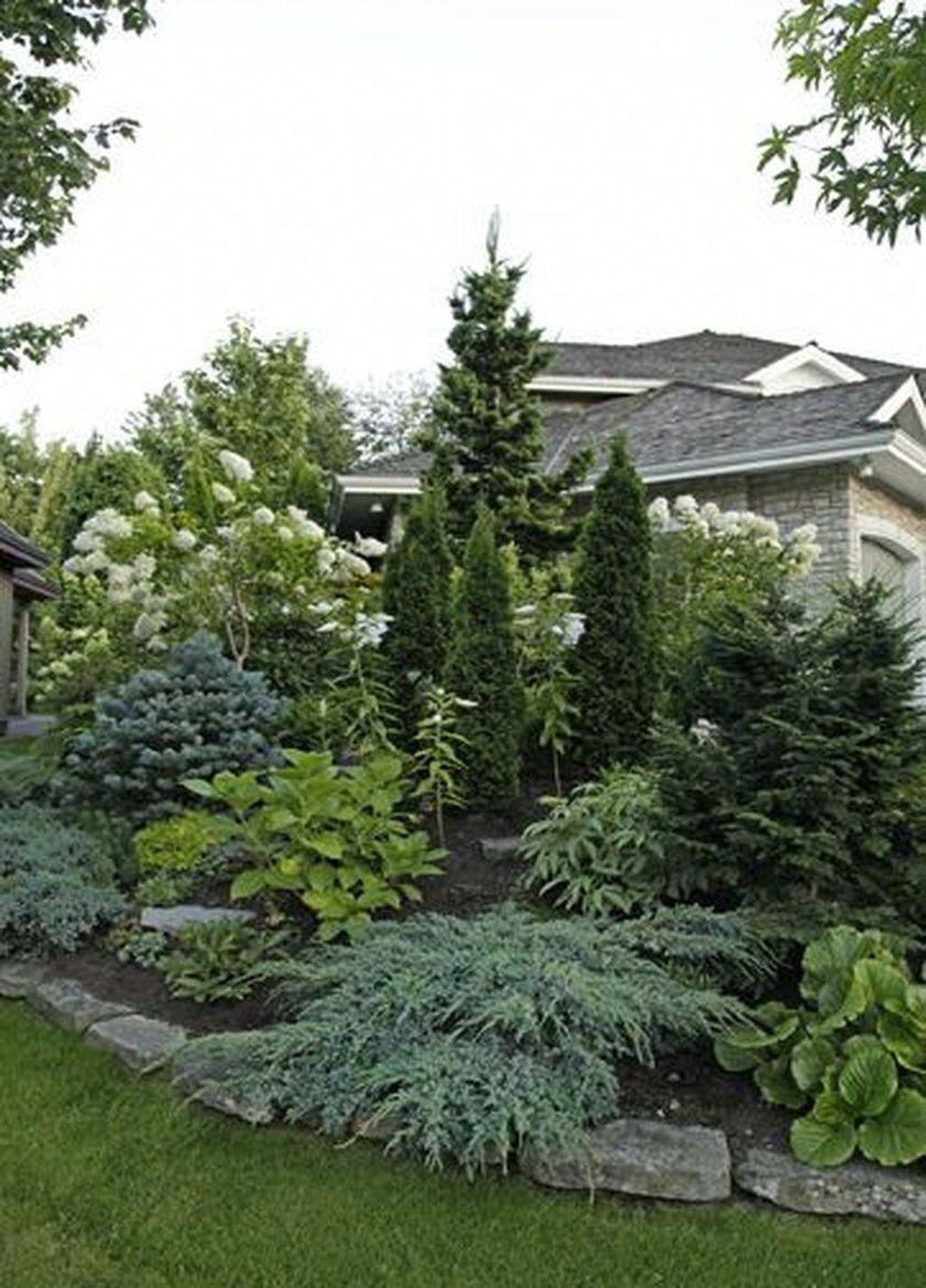 Wonderful Evergreen Landscape Ideas For Front Yard 23