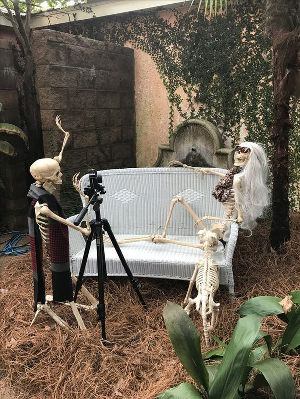 Awesome Halloween Backyard Party Decorations Ideas 15
