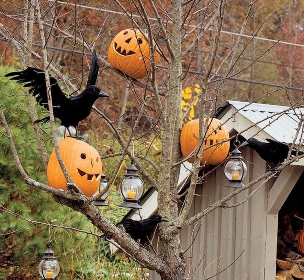 Awesome Halloween Backyard Party Decorations Ideas 22