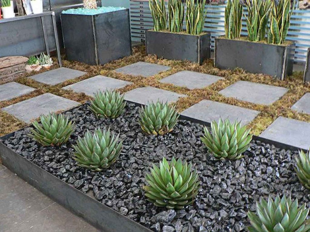 Awesome Succulent Front Yard Landscaping Ideas 22