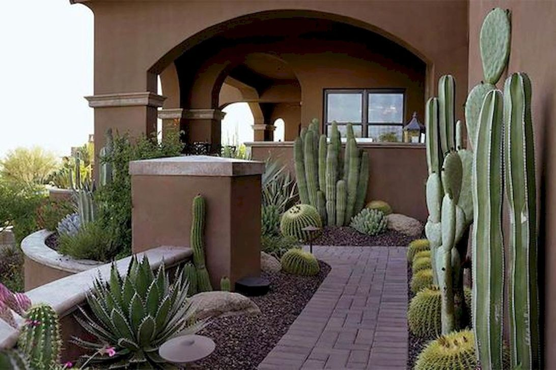Awesome Succulent Front Yard Landscaping Ideas 27