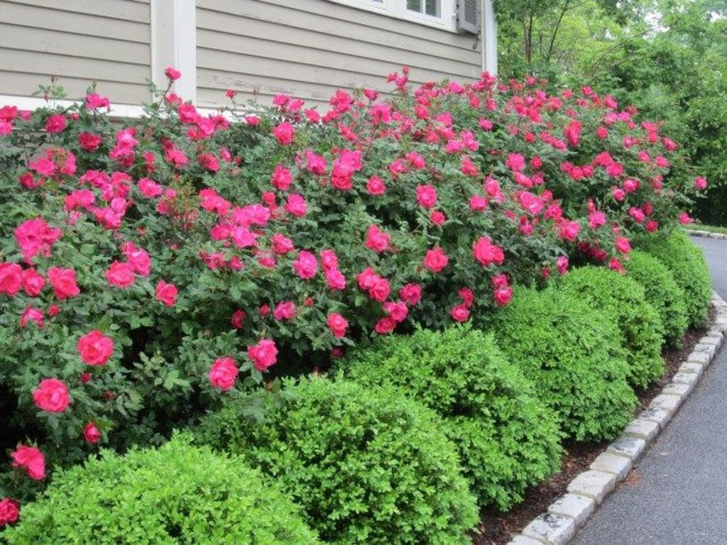 Beautiful Flower Beds Design Ideas In Front Of House 24