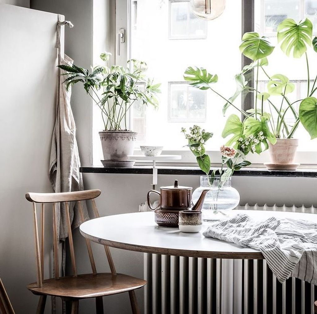 Beautiful Oasis Home Decor Ideas You Must Try 04