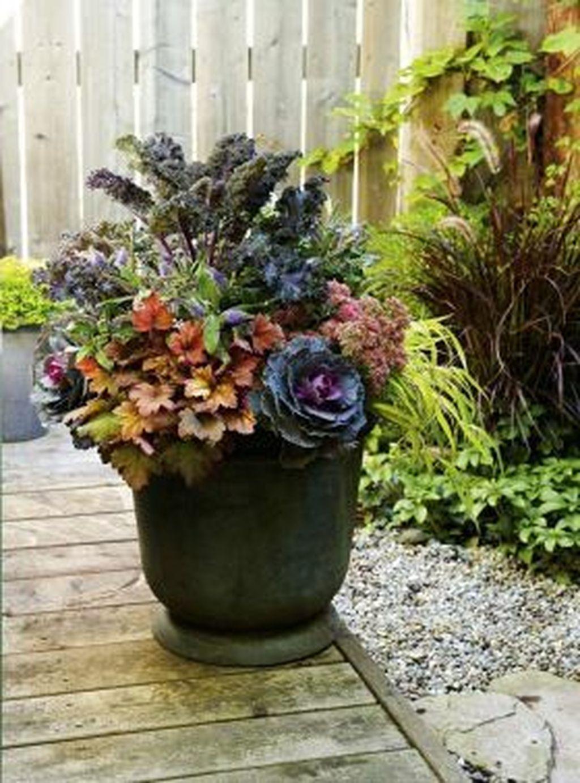 Inspiring Winter Container Gardening Ideas 01