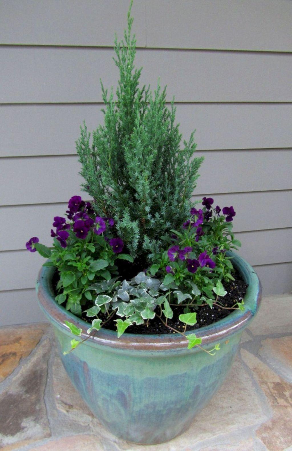Inspiring Winter Container Gardening Ideas 02