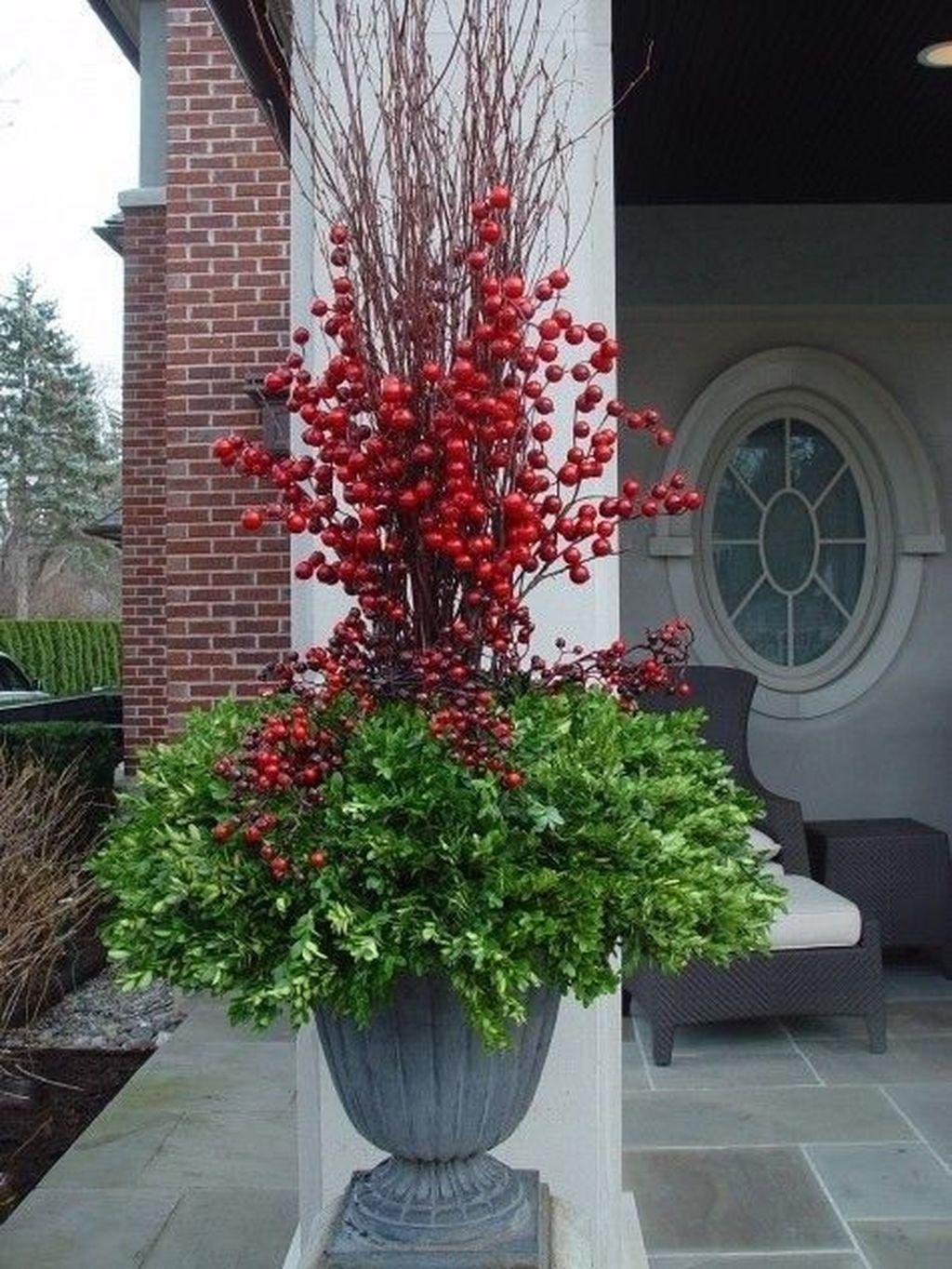 Inspiring Winter Container Gardening Ideas 04