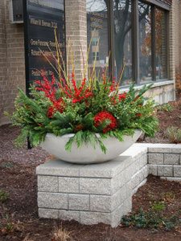Inspiring Winter Container Gardening Ideas 19
