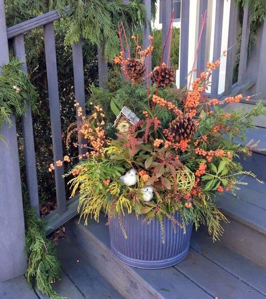 Inspiring Winter Container Gardening Ideas 32
