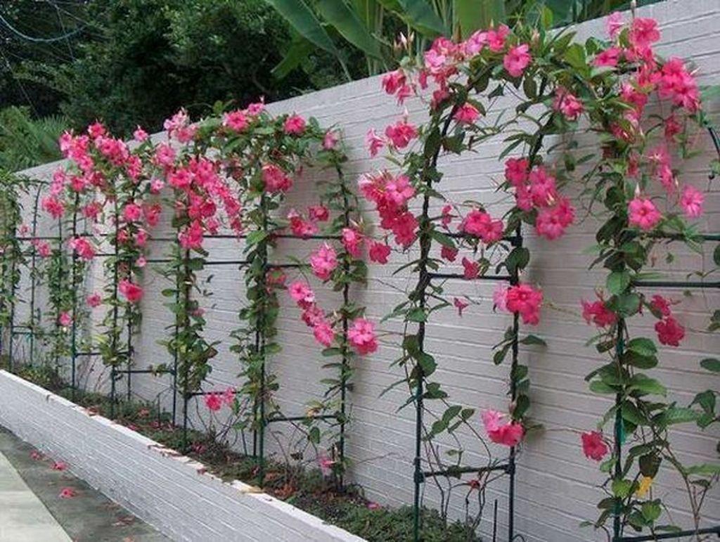 Stunning Garden Decoration Ideas 30