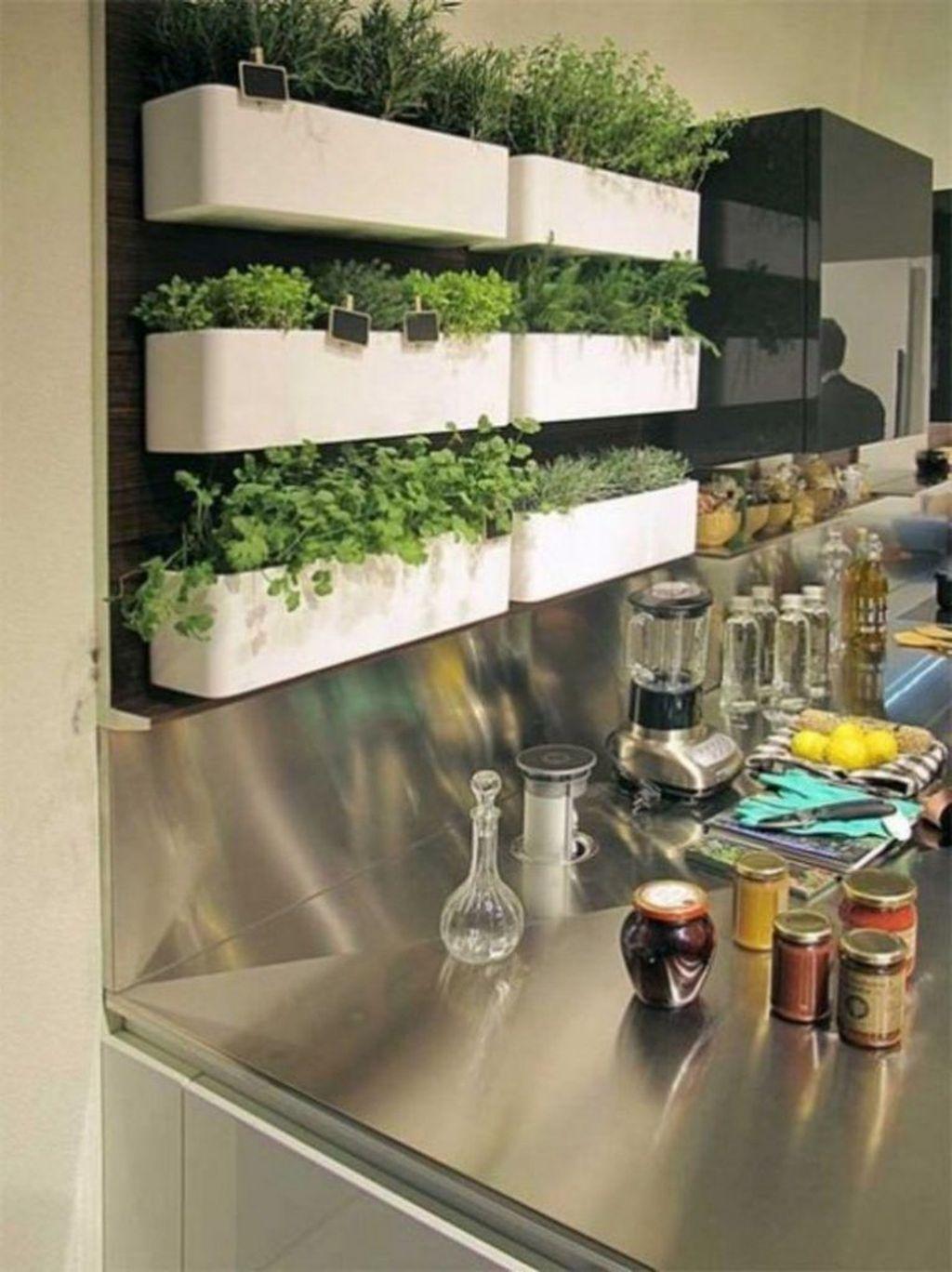The Best Indoor Garden Ideas To Beautify Your Home 14