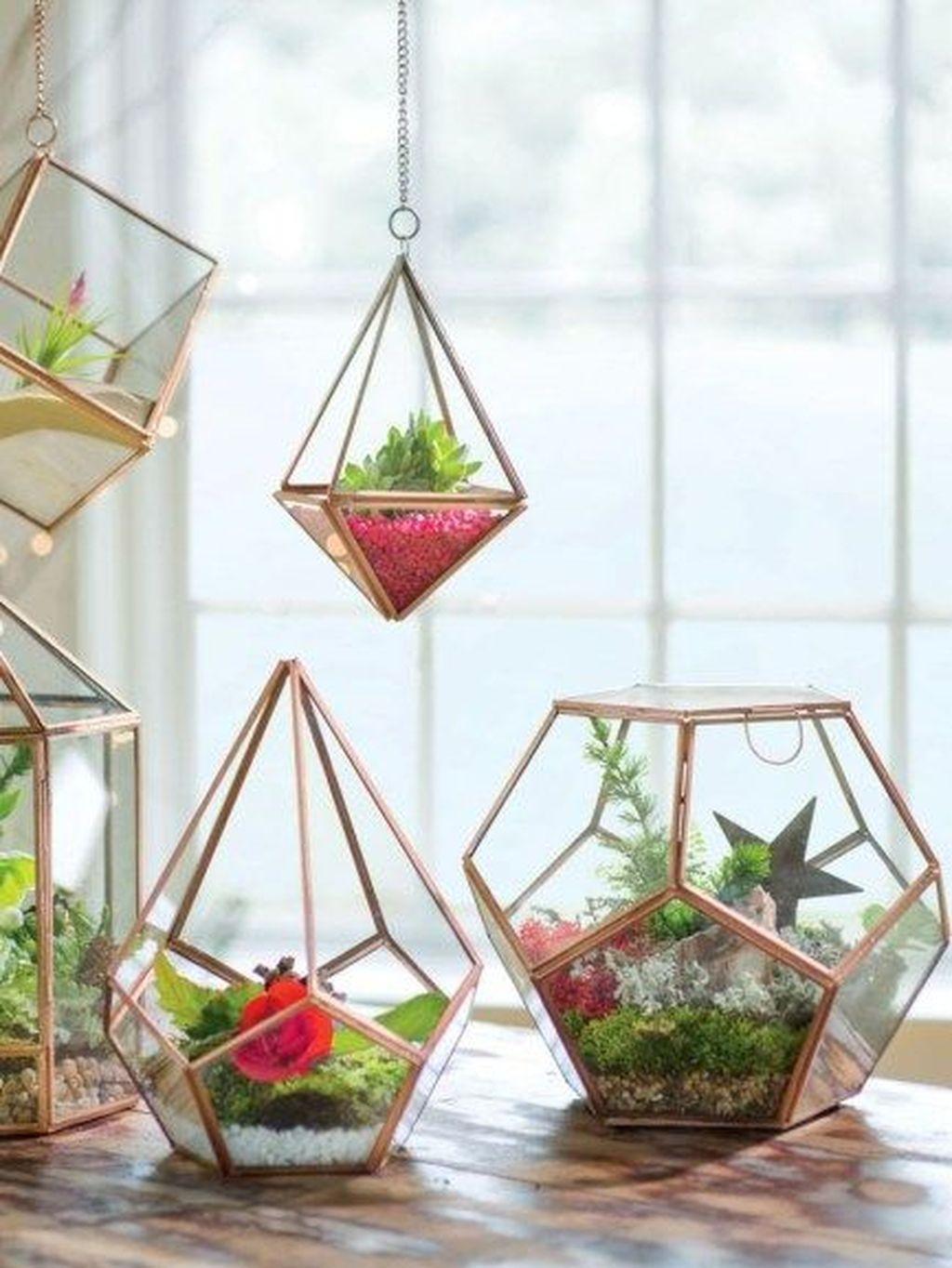 The Best Indoor Garden Ideas To Beautify Your Home 28