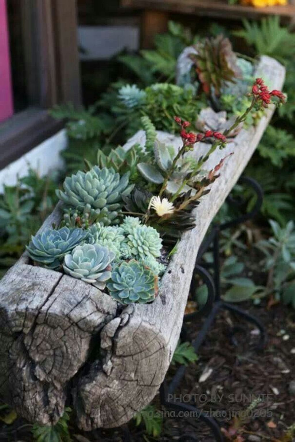 Beautiful Outdoor Succulent Planter Ideas 13