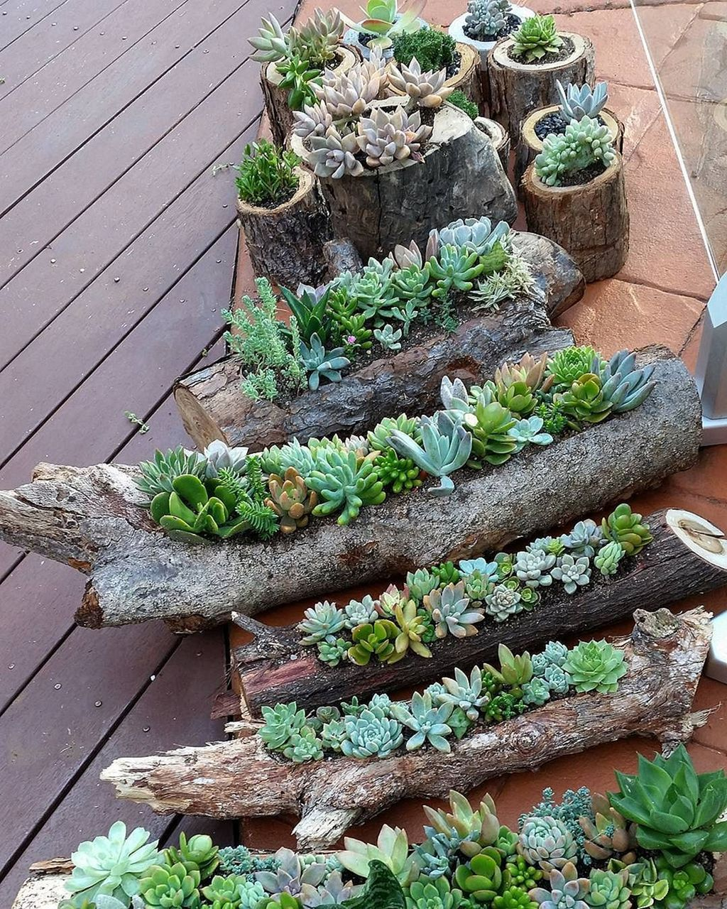 Beautiful Outdoor Succulent Planter Ideas 20