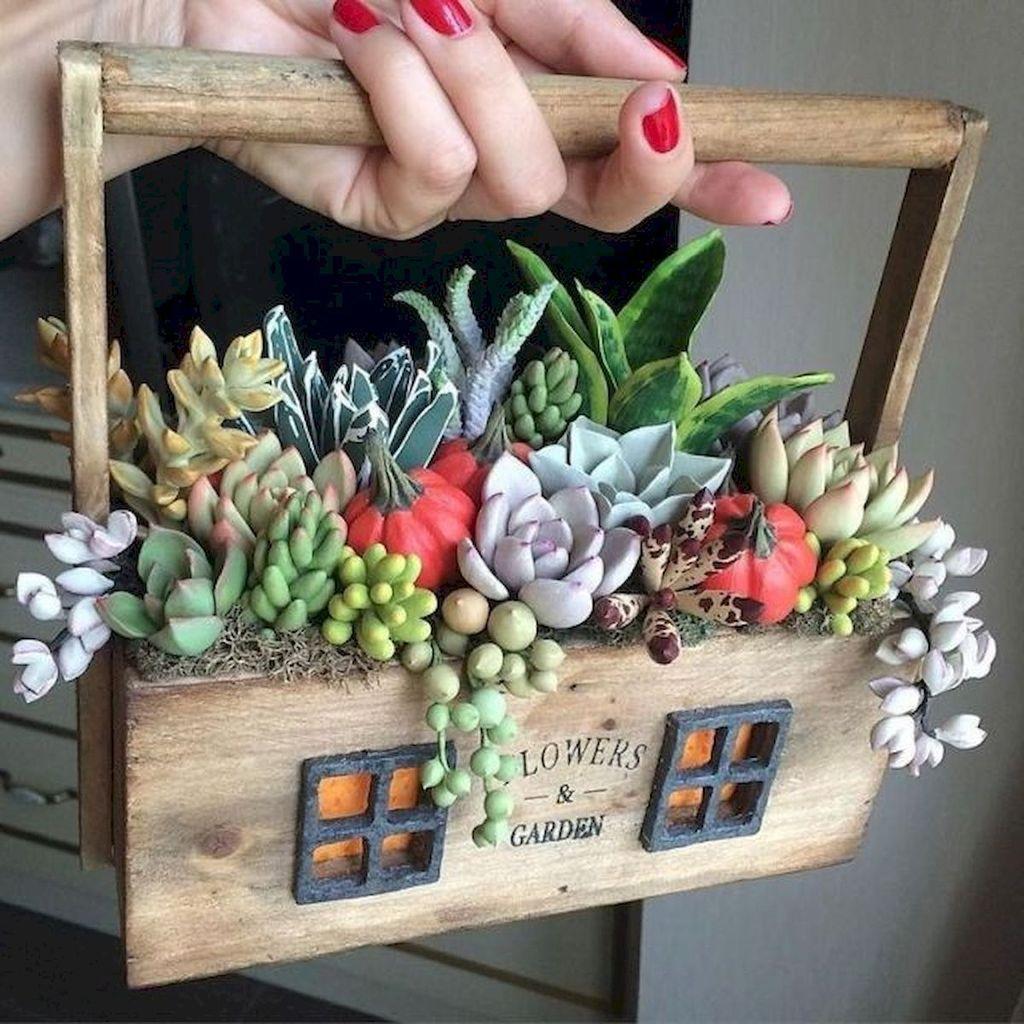 Inspiring Indoor Garden Succulent Ideas 22